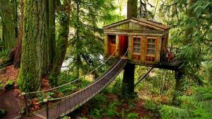 137426473217714121800701197_treehouse_soothe