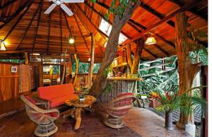 tree-house-interior_newsfull_h